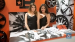 girls-of-sema-2014-164