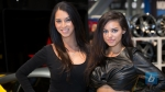 girls-of-sema-2014-177