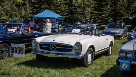 2015-calgary-european-classic-car-meet-das-volks-30